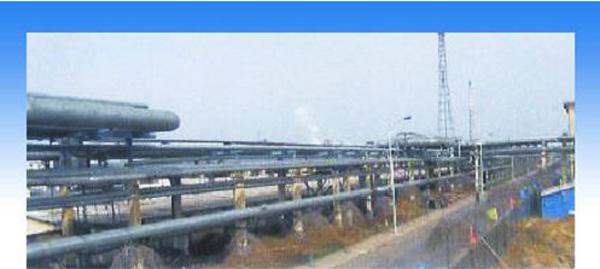 中石化上海高桥炼油厂