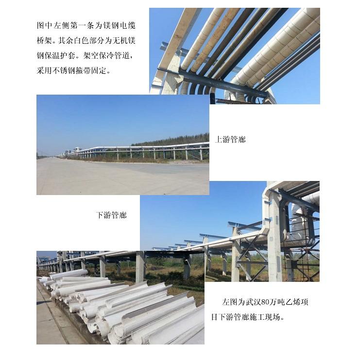 中石化武汉80万吨乙烯项目